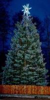 Pabradėje įžiebta Kalėdų eglė_11